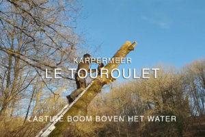 Lastige boom boven het karperwater